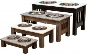 pet food and water dish with double bowls